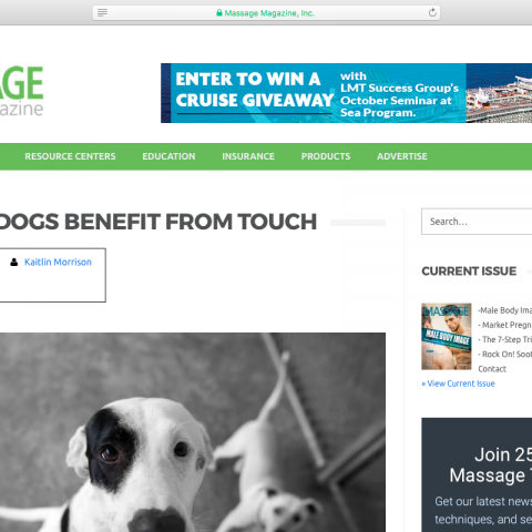 "Article: ""Shelter Dogs Benefit from Touch"""